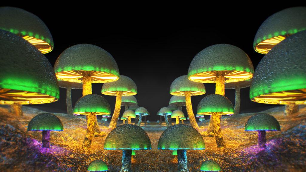 Mushrooms Ghosteam