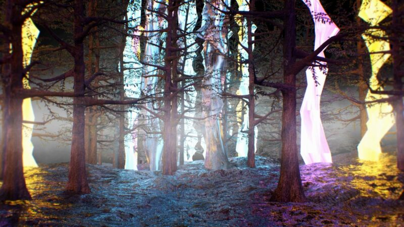 3D Forest - Wonderland VJ Loops Pack